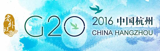 【老外谈G20】G20为发展中国家和发达国家架起交流桥梁