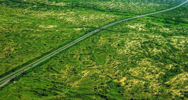 榆林夏日景象 绿松排排,绵绵无际,在碧海蓝天之下,更显郁郁葱葱,这是地处毛乌素沙漠边缘陕北榆林的夏日景象。6月17日是第24个世界防治荒漠化与干旱日,记者来到榆林,探访沙地生态修复的奇迹。 全球荒漠化以每年7万平方公里的增幅扩张,110多个国家、10亿人口深受其害。在中国,经过艰苦卓绝的治理,沙化土地面积连年持续缩减,创造了世界生态建设史上的奇迹。榆林正是我国荒漠生态修复辉煌成就的一个缩影。 蓝图绘到底 榆林是全国三北防护林体系建设重点区域。史载,榆林在秦汉时期沃野千里、庄稼殷实、水草丰美、群羊塞道。
